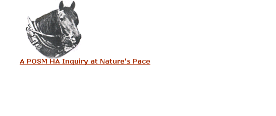 A POSM HA Inquiry at Nature's Pace