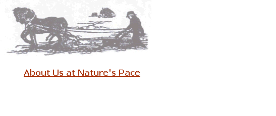 About Us at Nature's Pace